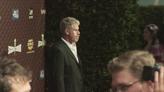 ron perlman at the spike tv's scream 2008 at los angeles ca. - scream named work stock-videos und b-roll-filmmaterial