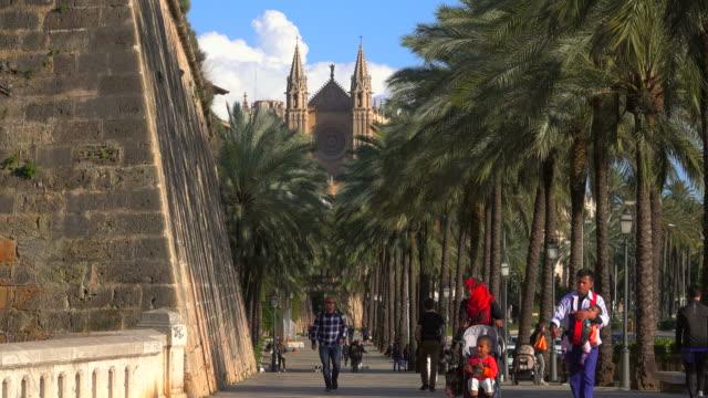 ronda migjorn and passeig de sagrera, la seu cathedral, palma de mallorca, majorca, balearic islands, spain - palma stock videos & royalty-free footage