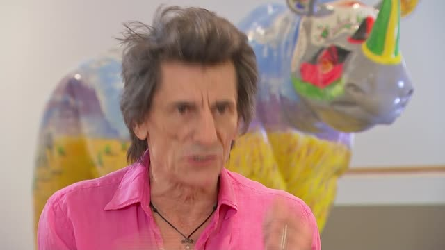 ronnie wood launches the tusk rhino trail in london england london ext ronnie wood interview sot on how painting helped him through his recent battle... - lunge stock-videos und b-roll-filmmaterial