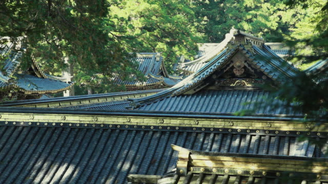 ms roof of nikko tosho-gu / nikko, tochigi, japan - shrine stock videos & royalty-free footage