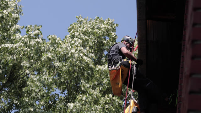 roof renovation. manual worker use safety harness and safety line  and working on a roof repair - roof tile stock videos & royalty-free footage