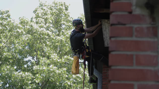 roof renovation. manual worker use safety harness and safety line  and working on a roof repair - imbracatura di sicurezza video stock e b–roll