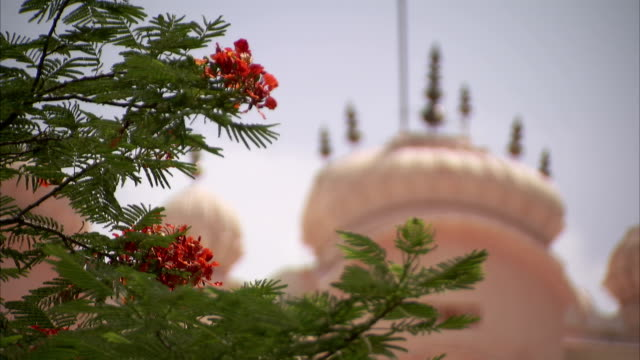 vídeos de stock, filmes e b-roll de rooftop details, jaipur. - arenito