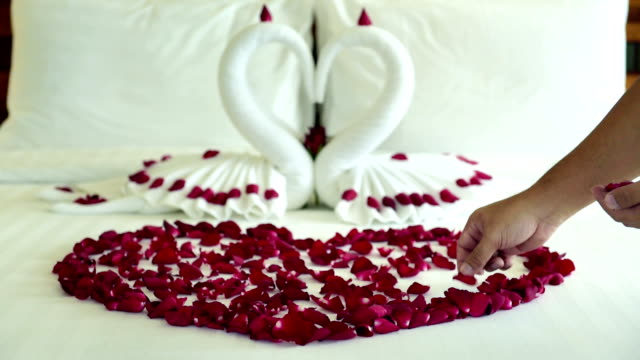 Room maid scatter many rose petals on bed