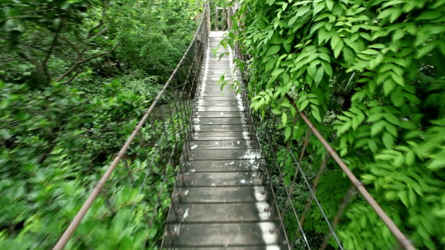 rope walkway through - suspension bridge stock videos & royalty-free footage