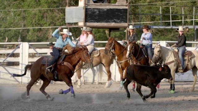 vídeos de stock, filmes e b-roll de cowgirl roping - laço acessório