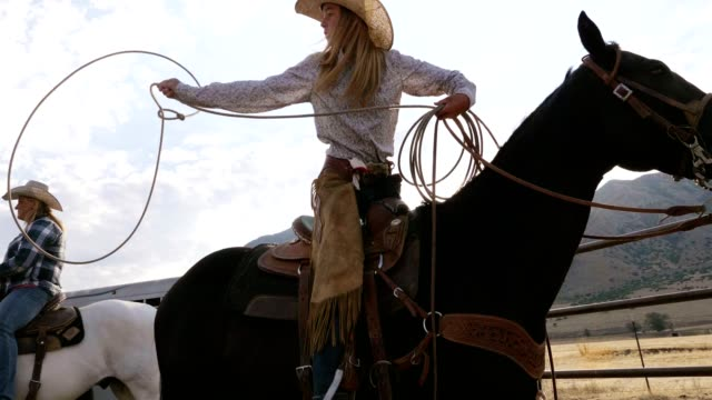 cowgirl roping - cowboy stock-videos und b-roll-filmmaterial