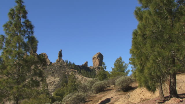 la ws roque nublo atop hill surrounded by trees / gran canaria, spain - roque nublo grand canary stock videos and b-roll footage