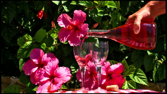 rosé wine poured into glasses with hibiscus - rose wine stock videos and b-roll footage