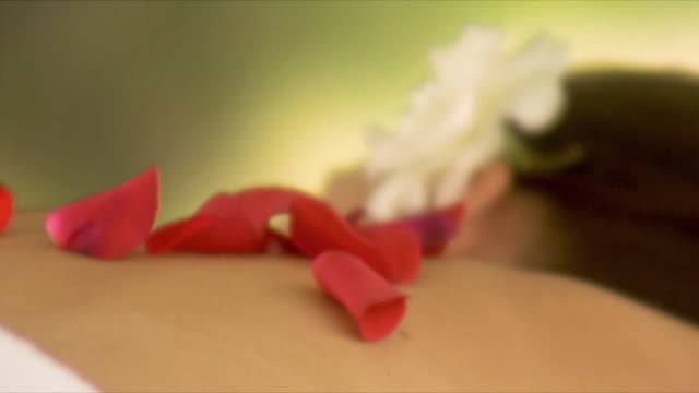 cu rose petals falling on woman's back / cape town, south africa    - マッサージ台点の映像素材/bロール