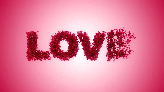 rose petals flying from love pink background - rose petals stock videos and b-roll footage