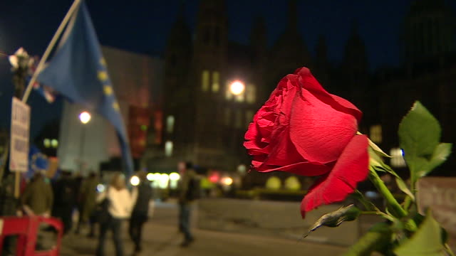 A rose tied to a lamppost outside the Houses of Parliament on Valentines Day whilst antiBrexit protesters demonstrate in the background