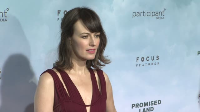 rosemarie dewitt at promised land new york premiere presented by focus features at amc loews lincoln square 13 theater on december 04 2012 in new... - amc loews stock videos and b-roll footage