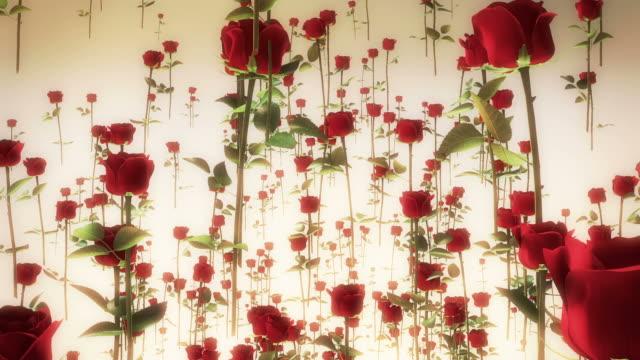 Roses Flying