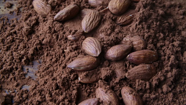 rotate shot cocoa chocolate powder almond seeds macro shot - cocoa powder stock videos & royalty-free footage