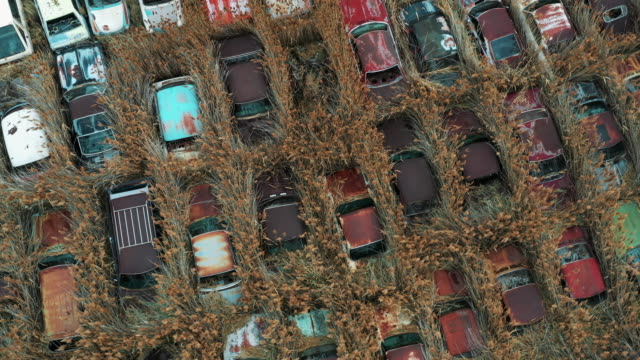 rotating aerial shot looking down on abandoned vehicles in an overgrown field, salt lake city, utah, united states of america - automobile industry stock videos & royalty-free footage