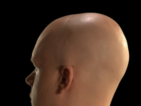 rotating bald man close-up - this clip has an embedded alpha-channel - pre matted stock-videos und b-roll-filmmaterial