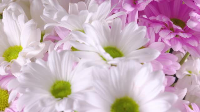 Rotierende Bouquet von weißen und rosa Blüten