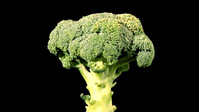 回転 broccolli - ブロッコリー点の映像素材/bロール
