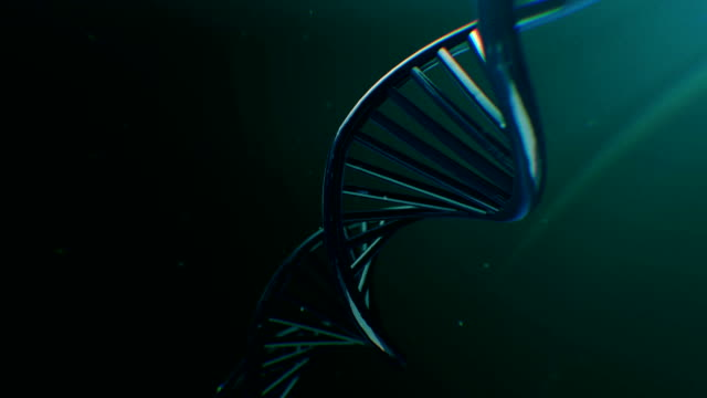 rotating dna. genetic scientific concept - biochemistry stock videos & royalty-free footage