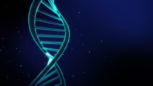 sequenza di dna rotante 4k loopable - dna microarray video stock e b–roll