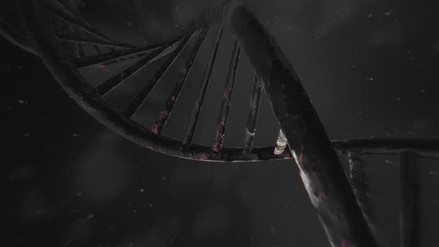 sequenza di dna rotante 4k. sfondo realistico. animazione 3d - dna microarray video stock e b–roll