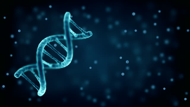 rotating dna strand. double helix structure. biotechnology and medical background - molecule stock videos & royalty-free footage