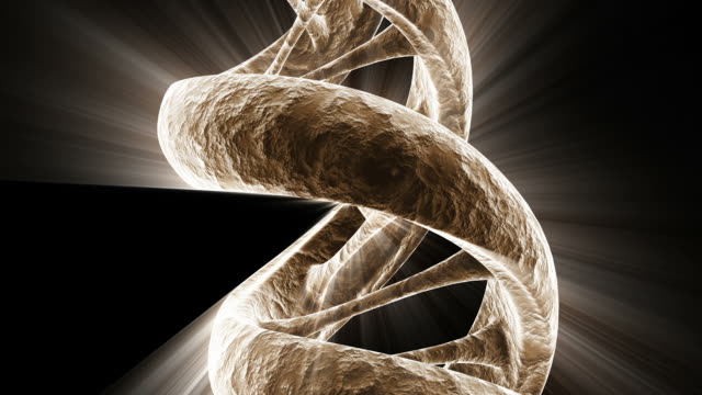 a rotating dna strand with light effects - helix model stock videos & royalty-free footage