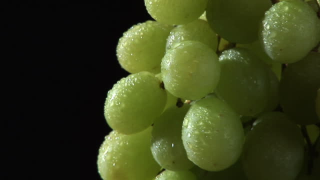 hd: rotating grape - grape stock videos & royalty-free footage