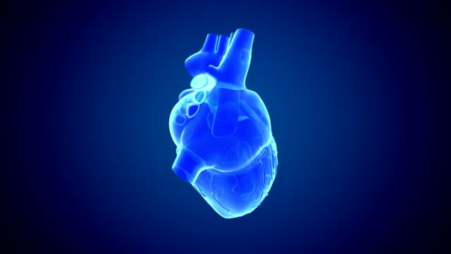 rotating heart blue - heart stock videos & royalty-free footage