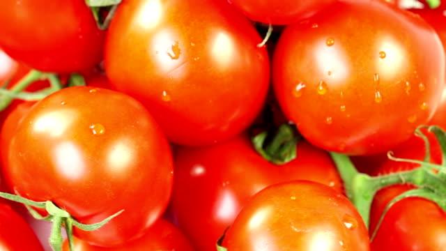 vidéos et rushes de rotation de tomates-zoom arrière - zoom