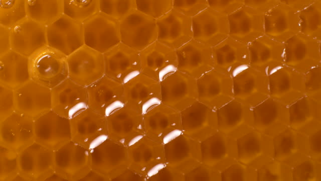 rotation of honeycomb background texture - natural pattern stock videos & royalty-free footage