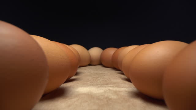 rotation video shooting of hen eggs from the tray - shape stock videos & royalty-free footage