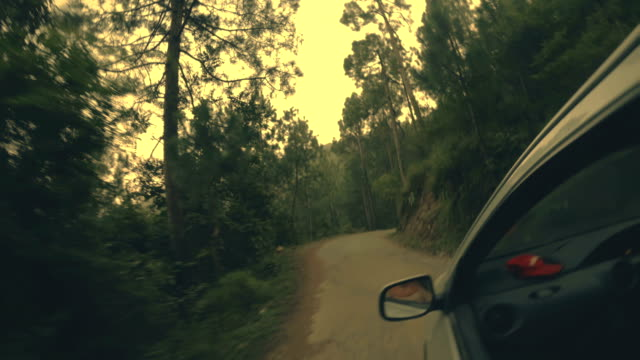 rotation view on the road through pine trees in mountain. - pine stock videos & royalty-free footage