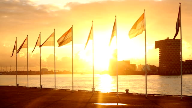 rotterdam: flags from netherlands - industrial ship stock videos & royalty-free footage