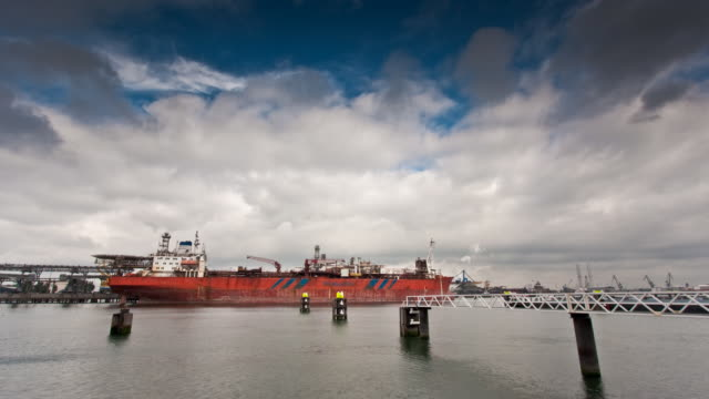 hafen von rotterdam - schiffsfracht stock-videos und b-roll-filmmaterial