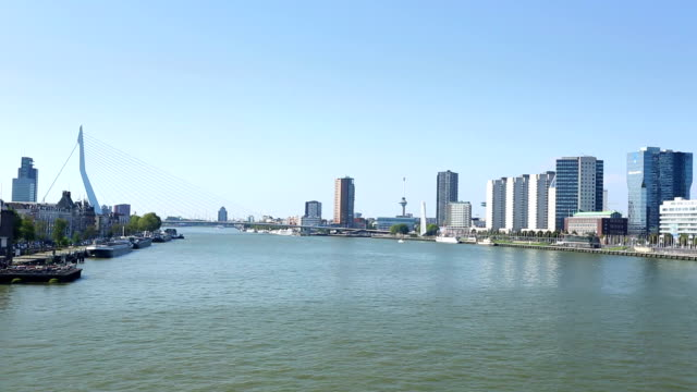 stockvideo's en b-roll-footage met rotterdam skyline - hersenstam