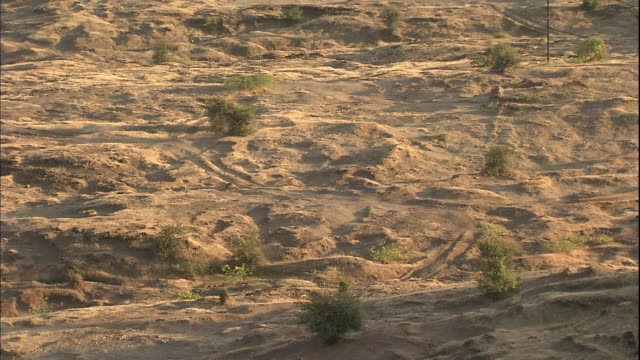 rough firm ground of deccan plateau, india - plateau stock videos and b-roll footage