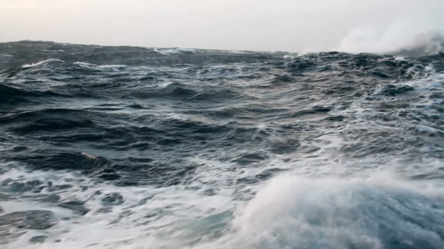 WS Rough ocean waves with wind, Antarctica