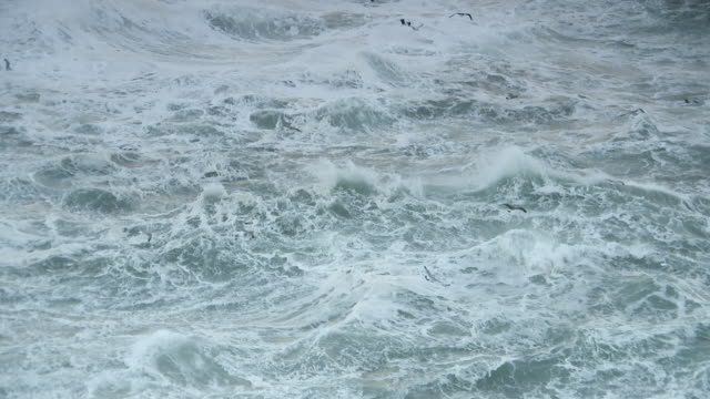stockvideo's en b-roll-footage met rough seas with gulls - atlantische oceaan
