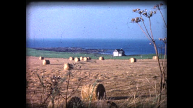 1980 round bales of hay in coastal field - hay bail stock videos & royalty-free footage