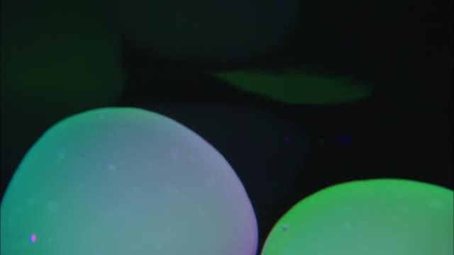 round purple and green shapes stretch and shift form as they float against a black background. - förvriden bildbanksvideor och videomaterial från bakom kulisserna