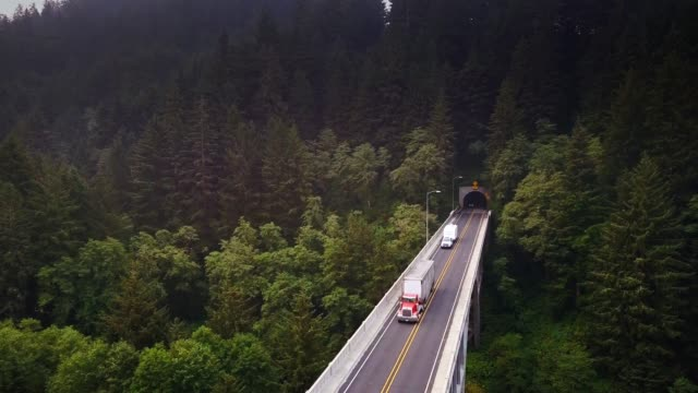 us route 101 on cape creek bridge - aerial view - heceta head stock videos & royalty-free footage