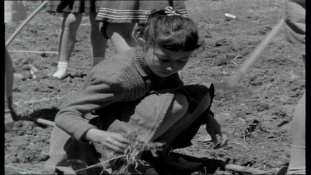 israel behind the trial location unknown children working in field jerusalem child acting as road crossing patrol officer / boy along carrying tray... - israele video stock e b–roll