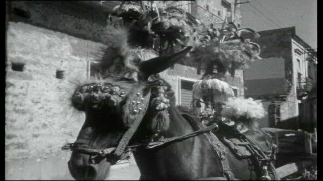 journey through sicily taormina various of greek amphitheatre / man along road on donkey / men along on cart pulled by donkey / horse wearing... - headdress stock videos and b-roll footage