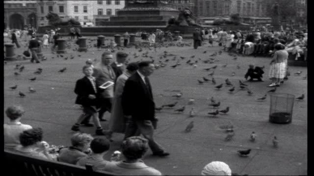 lena in london; **music overlay** trafalgar square: ext nelson's column/ lena feeding pigeons **music ends** - トラファルガー広場点の映像素材/bロール