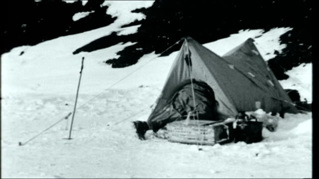 operation deep freeze man sat outside tent pitched with mountains in the background man eating huskies as man along feeding them tent pitched in snow... - cracker stock videos and b-roll footage