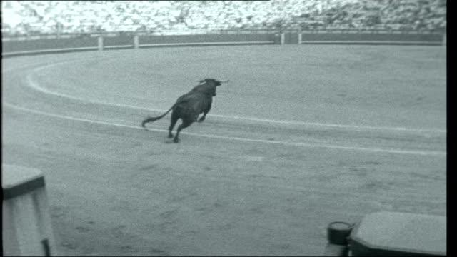 thaw in spain various of bullfight matador crowds - bullfighter stock videos & royalty-free footage