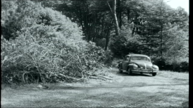 the new irish ext glandore coast scenes / castle and modern chalet buildings / volkswagon car along country lane / car pulls up and men get out /... - chalet video stock e b–roll