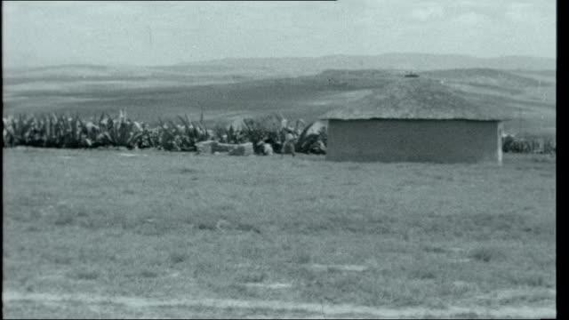 vidéos et rushes de transkei experiment in apartheid south africa transkei ext village hut in transkei countryside gv village umtata various shots of bantu people... - apartheid